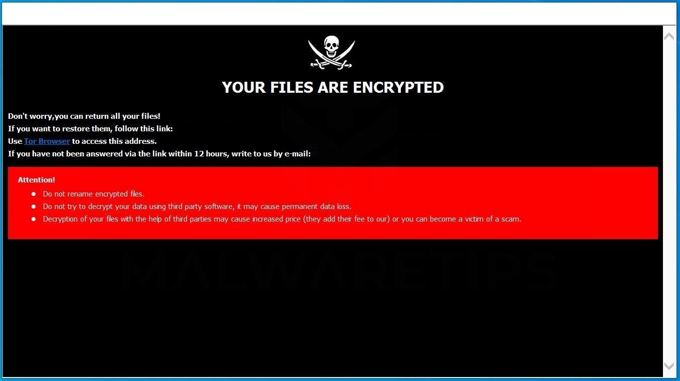 فيرس الفدية ransomware